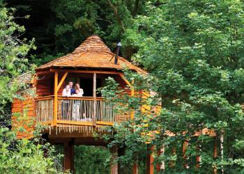 Sherwood Forest Lodges, Sherwood Forest,,England