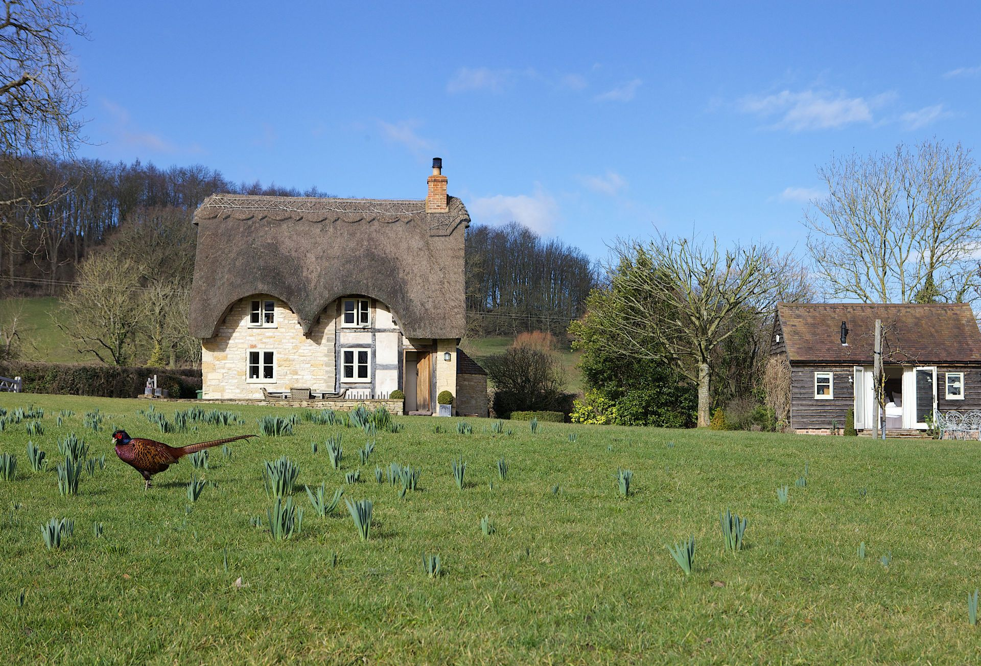 Field Cottage a british holiday cottage for 2 in ,
